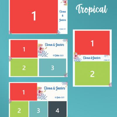 10x15 tropical-01